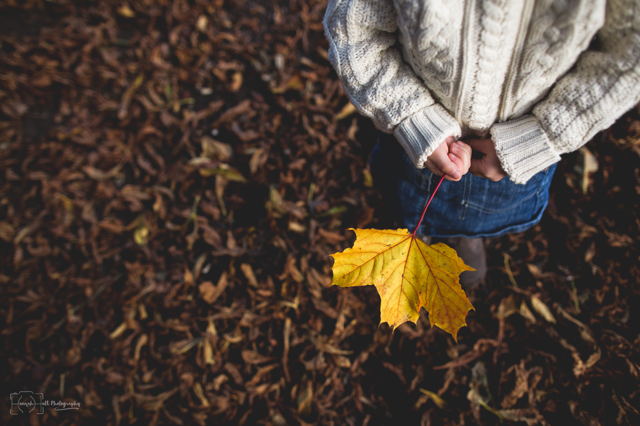 autumn-family-shoot-13