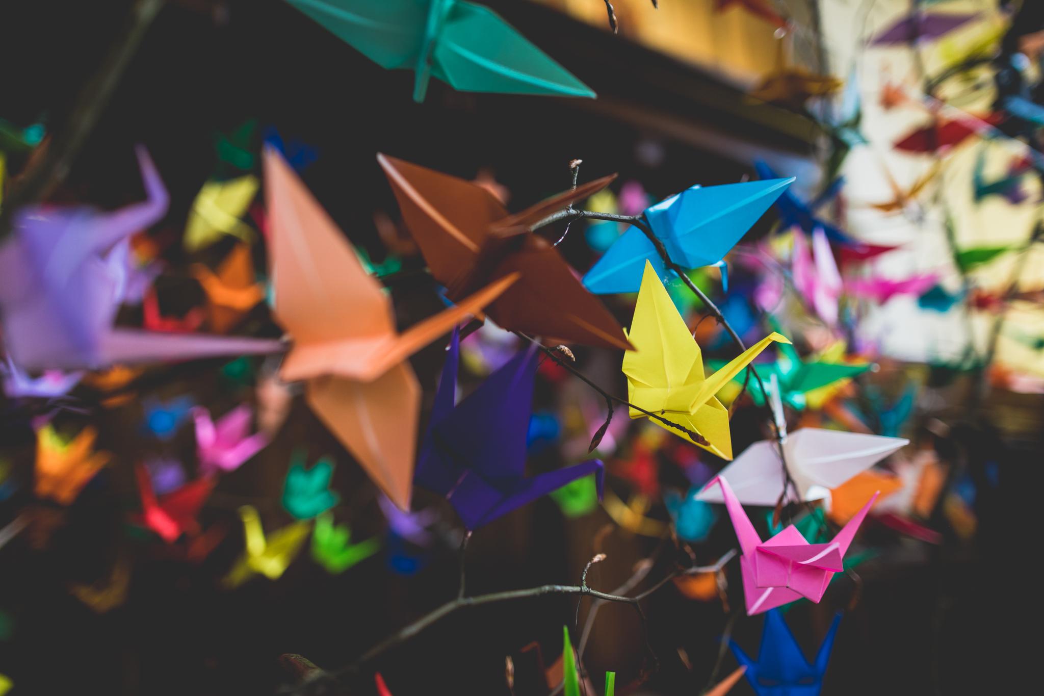 1000_paper_cranes-58